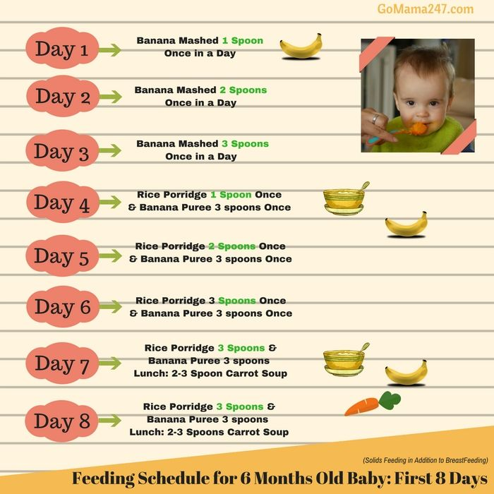 12 month old feeding guide