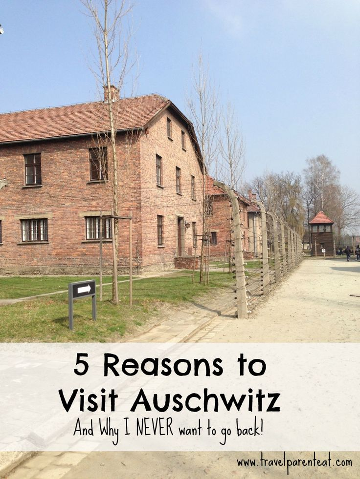guided tour auschwitz from krakow