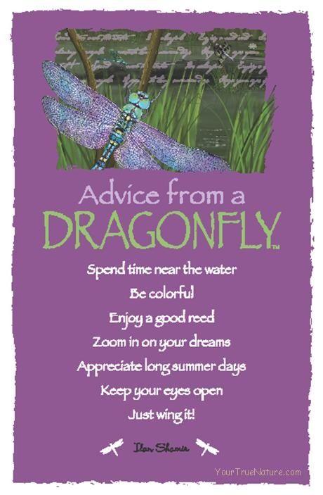 dragon spirit guide spiritual meaning