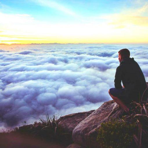 the mind illuminated a complete meditation guide pdf