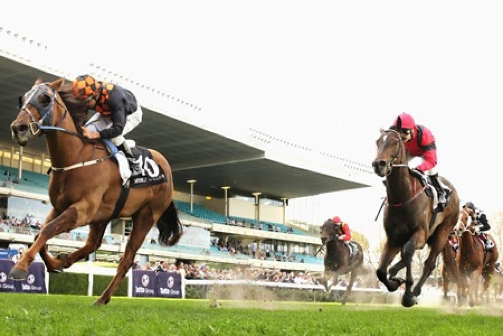 online betting guide horse racing