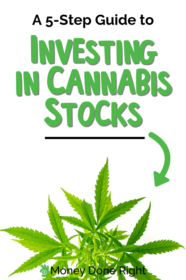 guide to investing in shares