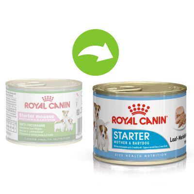 royal canin starter mousse feeding guide