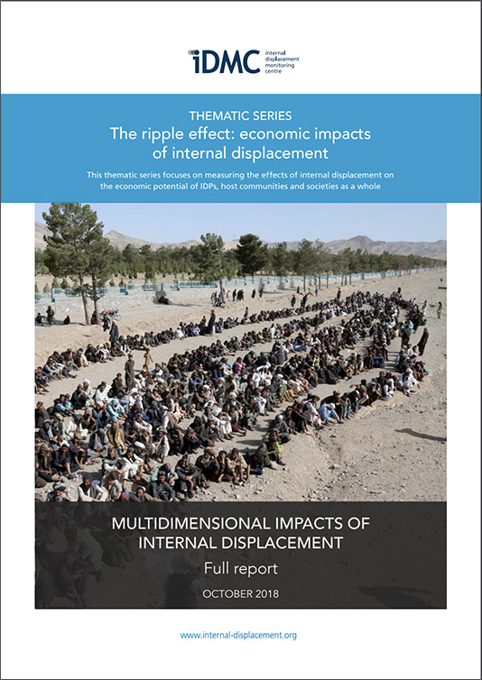 guiding principles on internal displacement
