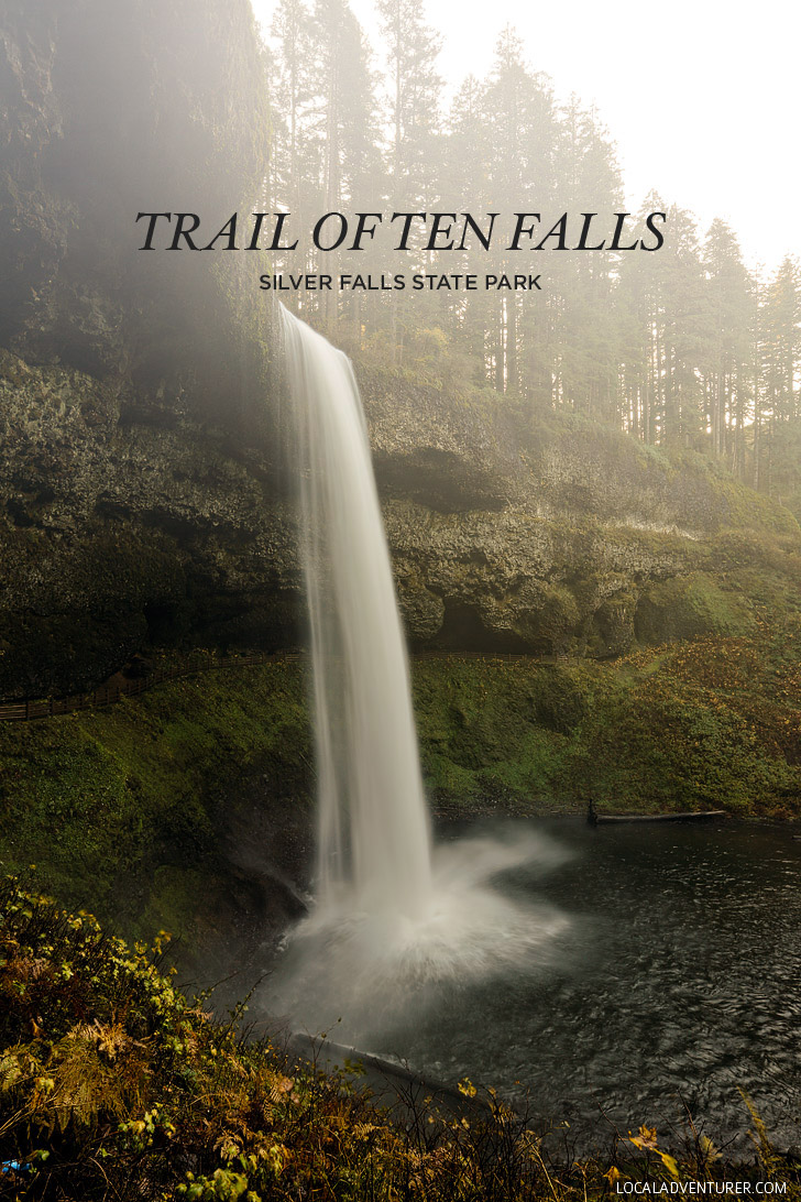 trail guide to the body online free