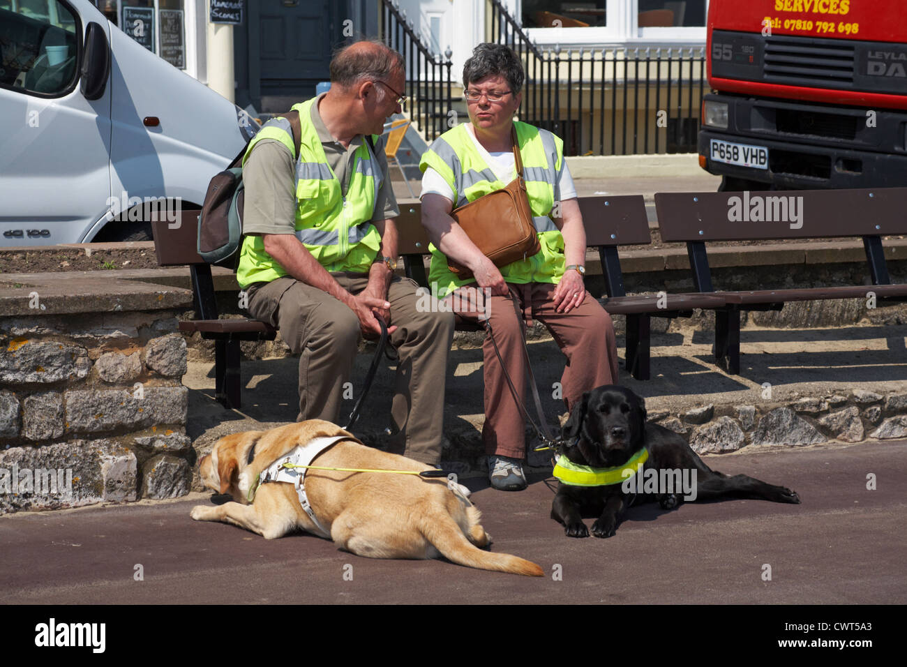 guide dogs for the blind charity