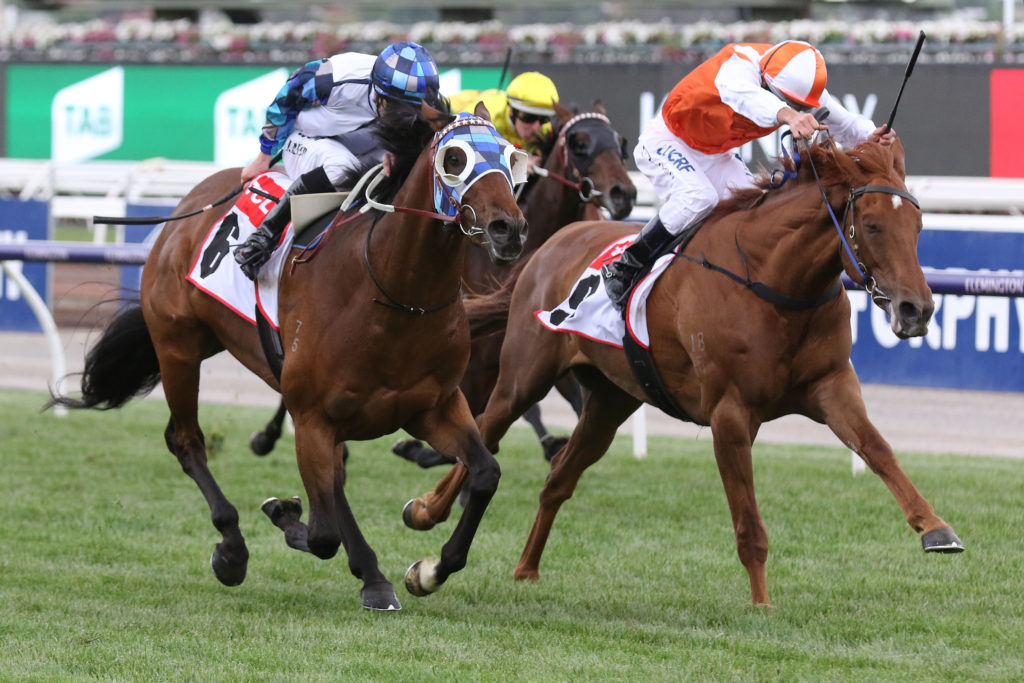 melbourne cup betting guide 2014