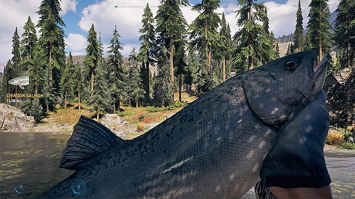 far cry 5 fish guide