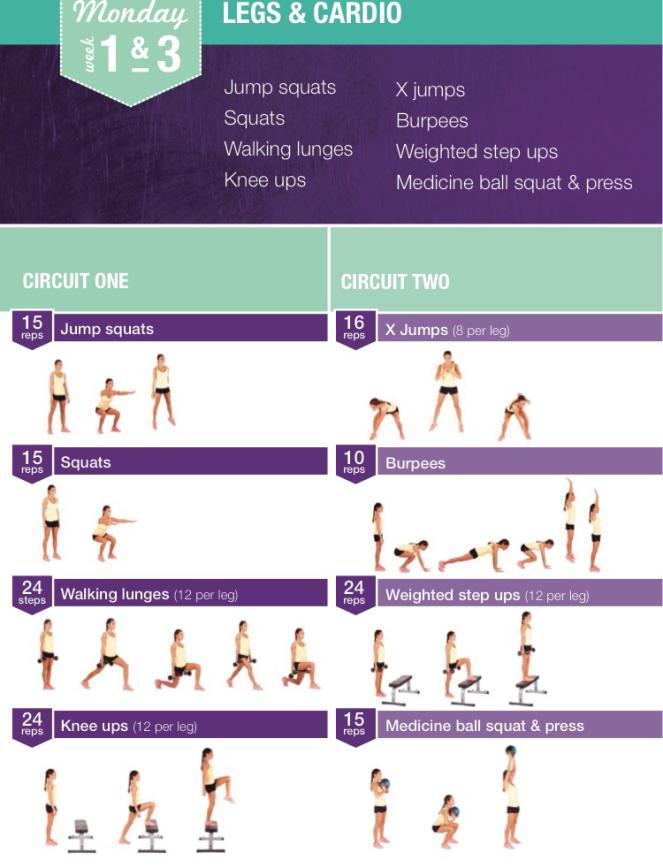 kayla itsines 12 week bikini body program & nutrition guide
