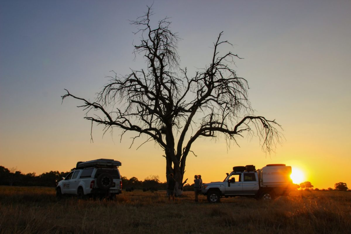 guided self drive tours botswana