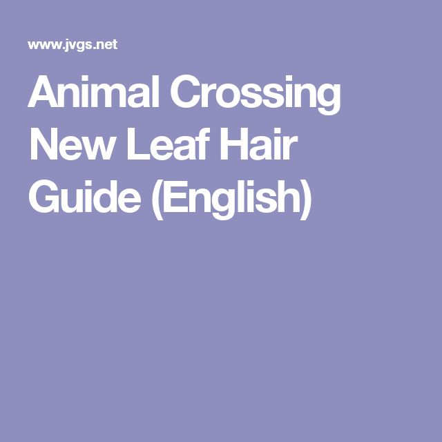 animal crossing wii hair guide
