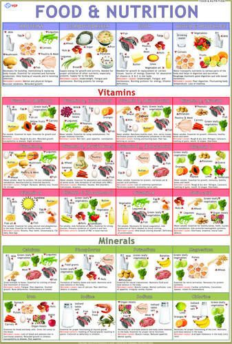 baby bullet recipe book and nutrition guide pdf
