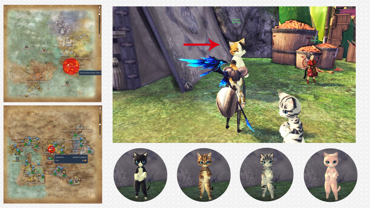 blade and soul summoner guide