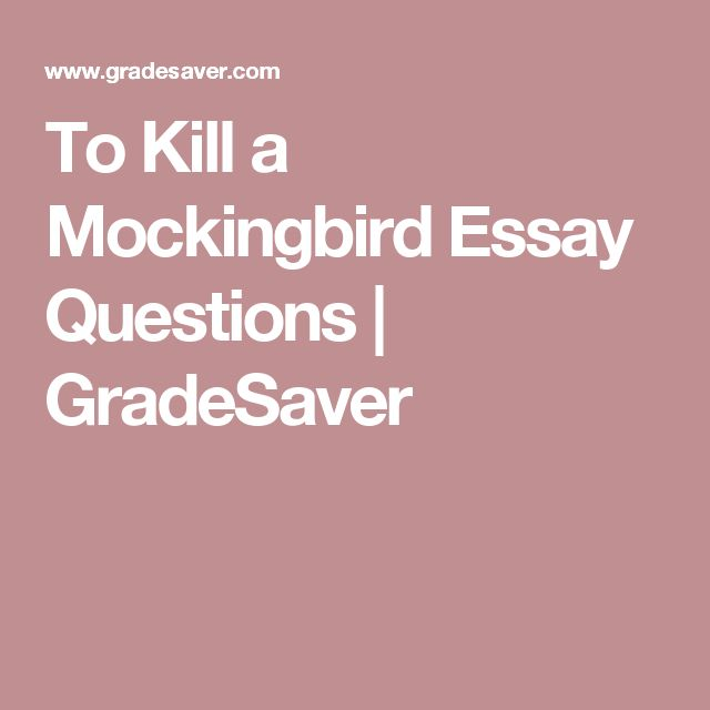 to kill a mockingbird guided reading questions