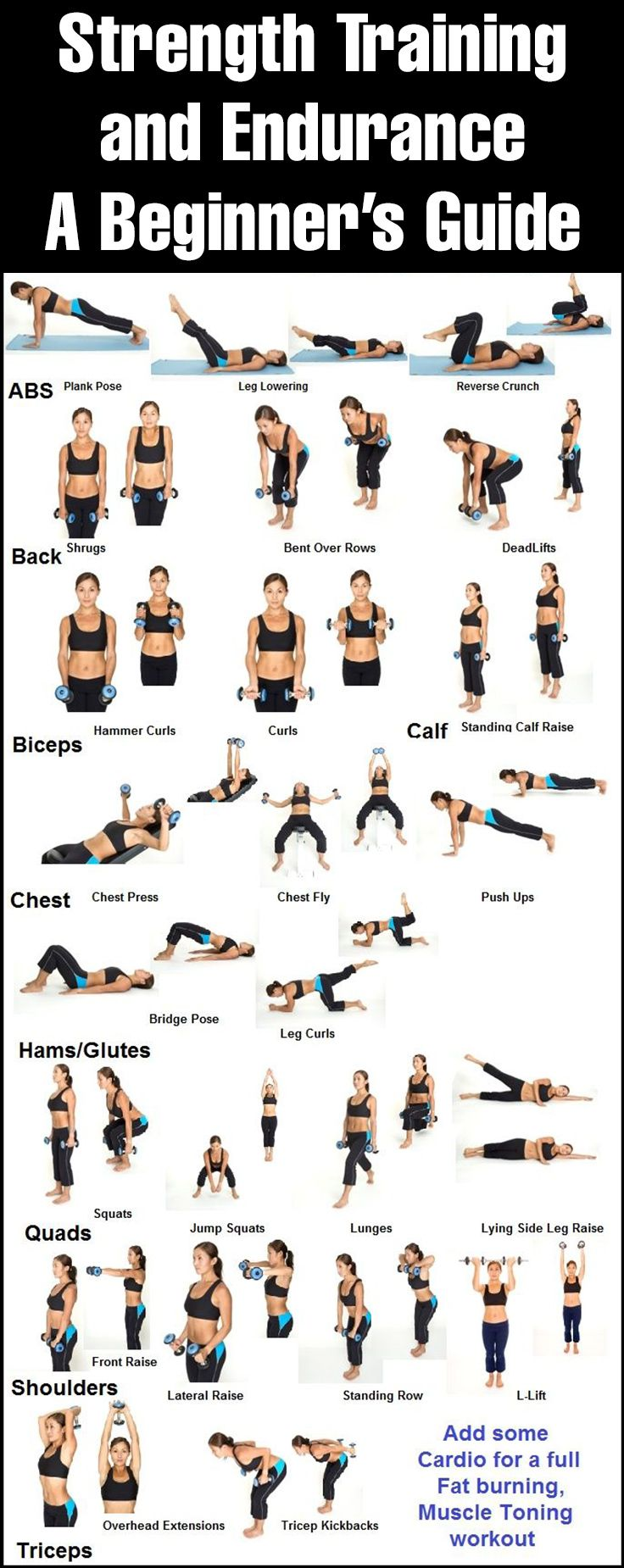 fitness guide for beginners pdf