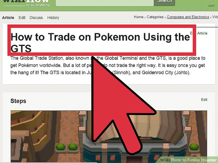 pokemon heart gold leveling guide