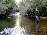 victorian recreational fishing guide app